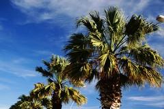 Il turismo sta per ripartire in Puglia: pronta l'ordinanza balneare