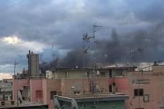 Incendio Dalena Ecologia, il monitoraggio dell'Arpa