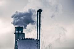 Forum Salute e Ambiente: «L'intesa tra comune e Arpa affossa la delibera popolare»