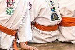 Al Paladisfida di Barletta arriva il karate targato Fijlkam
