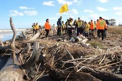 Plastica, batterie e rifiuti: Legambiente Barletta ripulisce la foce dell'Ofanto