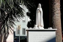 Vandalismo a Barletta, danneggiato monumento alla Madonna in via Chieffi
