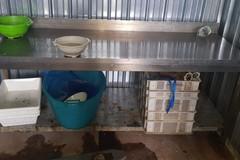 Sequestrati 200 kg di molluschi, in azione la Guardia Costiera di Barletta