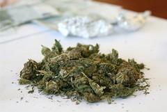 Scoperta centrale di smistamento di marijuana in via Manzoni