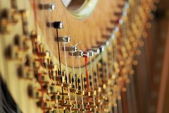 Musicisti e cantori, una speciale benedizione a Barletta