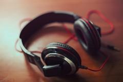CasaPound sulle emissioni sonore: «Ottimo segnale, ma che non rimanga un caso isolato»