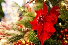 Santa Messa di Natale in Bar.S.A. per il tradizionale scambio di auguri