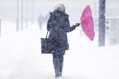 Gelo e neve su Barletta, lunedì le scuole restano chiuse