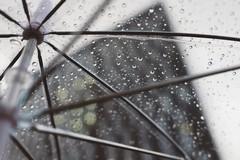 Allerta meteo gialla su Barletta e sul territorio pugliese a partire da domani