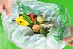 Raccolta dell'organico potenziata per l'estate