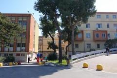 Dedicati 100 posti letto al Covid-19 nell'ospedale di Bisceglie