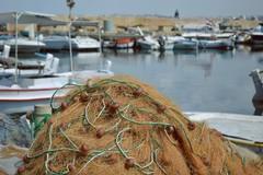 Ammodernamento darsena dei pescatori a Barletta: «Progetto ammesso a finanziamento»