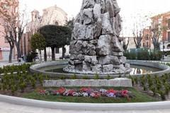 L'appello contro l'inciviltà: «Doniamo bulbi, piante e fiori a piazza Plebiscito»