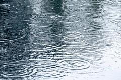 Previsioni meteo a Barletta, resta vento forte anche domani