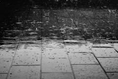 Meteo di oggi, rovesci e vento forte: maltempo previsto anche su Barletta