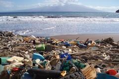 Nel mare di Barletta i pescatori potranno raccogliere anche la plastica
