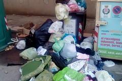 Via Giuseppe Ungaretti terra di rifiuti: «Degrado assoluto»