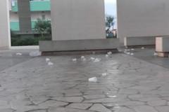 Bivacco al Parco dell'Umanità: finisce la festa, ma i rifiuti restano