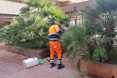 Siringa non coperta tra i rifiuti, mancato infortunio per un operatore Bar.S.A.