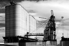 I silos granari di Barletta come montagne, un approfondimento sul tema
