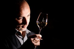 Scopri i segreti del vino, nella Bat il corso per sommelier ASPI