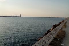 Dalla corsa all'ecologia, Barletta Sportiva organizza un'iniziativa in spiaggia