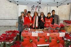"""""""Stelle di Natale 2017"""", l'A.I.L. Barletta in piazza contro la leucemia"""