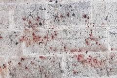 Strade sporche di sangue, rissa nel centro storico di Barletta