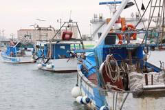 Venti milioni per il porto di Barletta: «Un risultato straordinario»