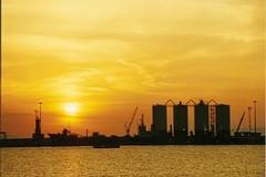 Porto di Barletta, Forza Italia: «Quando si lavora bene, i risultati arrivano»