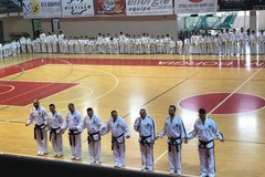 Taekwondo, i nomi dei convocati ai campionati europei di Tallinn
