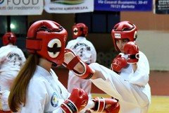 Taekwondo, esami di grado in vista degli europei di Praga