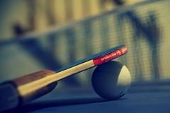 Tennistavolo: il 18 maggio si approssima tra mille avversità