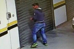 Topo di garage in azione in via Dante Alighieri