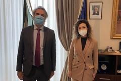 Maria Ilenia Piazzolla, viceprefetto aggiunto, nuova dirigente alla Prefettura di Barletta