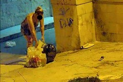 """Ancora rifiuti: le fototrappole immortalano gli """"sporcaccioni"""" di Barletta"""