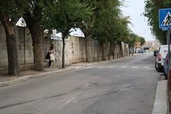 Casapound denuncia lo stato di degrado in via Vittorio Veneto