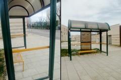 Nuove pensiline alle fermate dei bus, si comincia dall'ospedale di Barletta