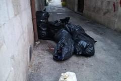 Bottiglie rotte e rifiuti, situazione cronica in vico Bagliva