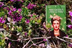 """""""Viva la Vida"""" di Pino Cacucci: Una doppia finestra sulla vita di Frida Kahlo"""