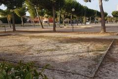 Il verde pubblico di Barletta tra degrado e vandalismi