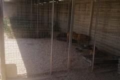 Zone d'ombra per gli ospiti del rifugio di Barletta: «Intervento tutt'altro che banale»