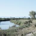 Valorizzare la valle dell'Ofanto: il progetto Ecomuseo realizzato da giovani ricercatori