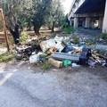 Ponte in via Vecchia Andria: una discarica a cielo aperto