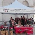 Natale di solidarietà, a Barletta tornano i fiori dell'A.I.L.