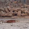 Peppino: il gatto che è tornato a casa dopo il crollo in Via Giuseppe Curci