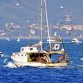 """""""Che pesci prendere?"""", la campagna della Flai Cgil arriva a Barletta"""