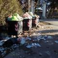 Cumuli di rifiuti a Montaltino, senza rispetto per la raccolta differenziata