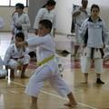 Trofeo Funakoshi, la 14^ edizione nel segno dell'Istituto Shotokan