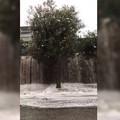 Acqua piovana in via Misericordia, Cianci: «Non vogliamo essere presi in giro»